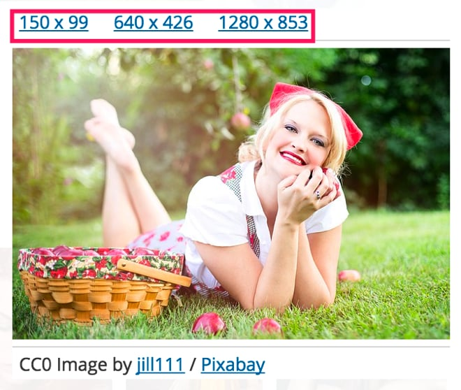 pixabay5